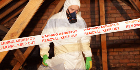 Significance of Professional Asbestos Testing