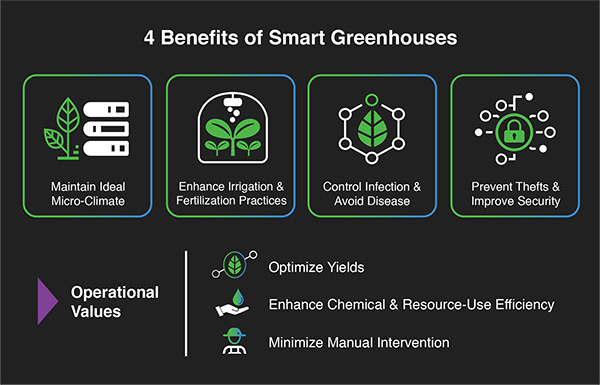 Do you know about the several advantages of the greenhouse?